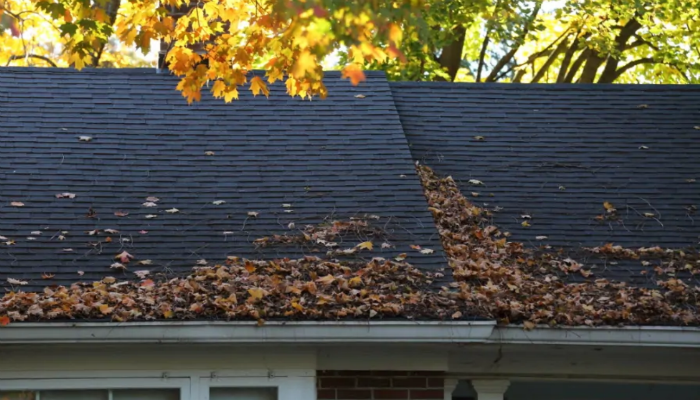 winterize home winter clean gutters